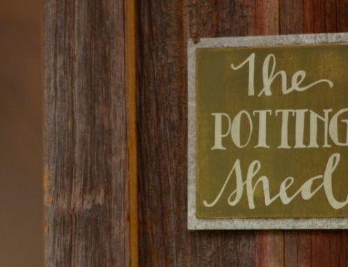 Featured Project – The Potting Shed
